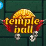 Temple Ball Challenge