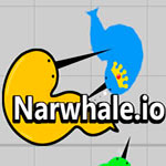 narwhale